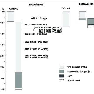 Apparent 210 Pb sedimentation rates (cm year À1 ) within