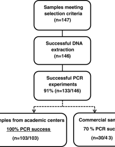 Idh pcr assay experimental flowchart technical success rate out of the formalin fixed paraffin embedded glioma clinical samples meeting also rh researchgate