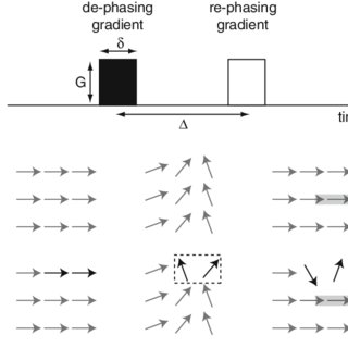 A simplified pulsed gradient spin-echo sequence used in