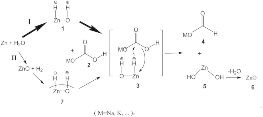 Proposed mechanism of reduction of HCO3− into formic acid