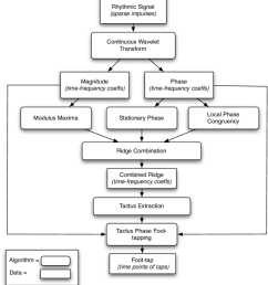 schematic diagram of the multiresolution rhythm interpretation system  [ 850 x 949 Pixel ]