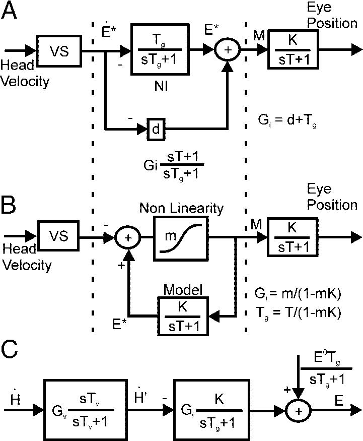 Block diagram representations of the VOR [input head