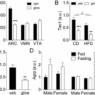 (PDF) Tachykinin-1 in the Central Nervous System Regulates