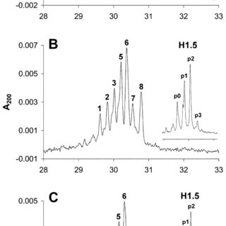 T-cell activation assessed by 5(6)-carboxyfluorescein
