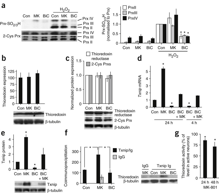 Synaptic activity prevents the overoxidation of Prxs in