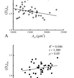 plots of box dimension versus dendritic field area a and box dimension versus dendritic [ 850 x 1306 Pixel ]
