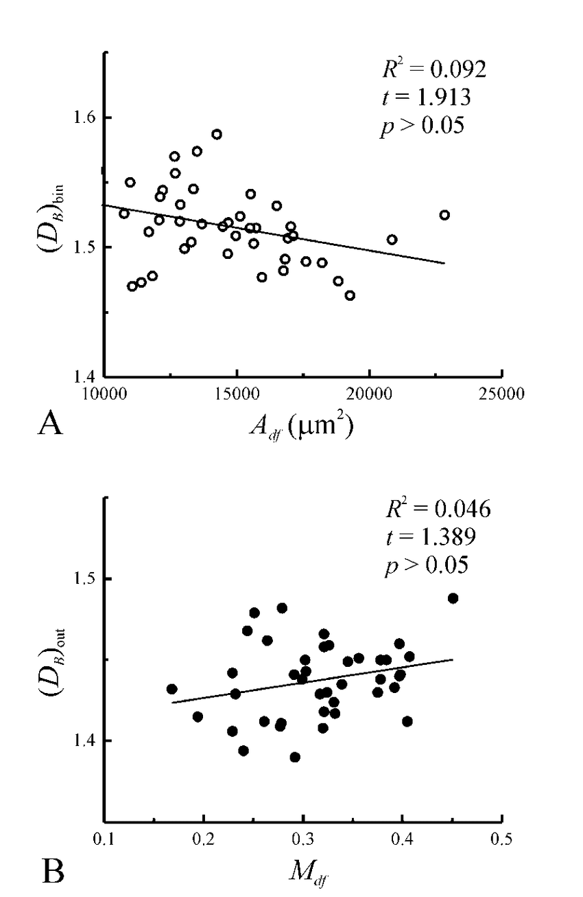hight resolution of plots of box dimension versus dendritic field area a and box dimension versus dendritic