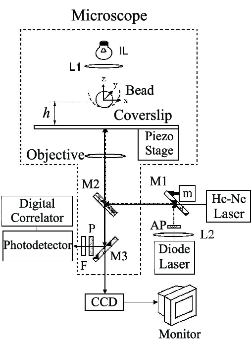 Schematic representation of the diode laser setup (DLS
