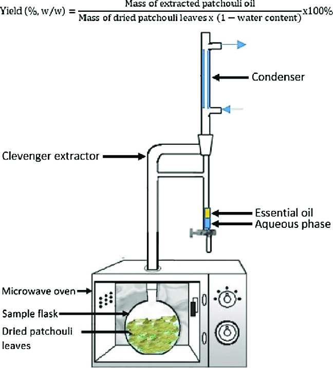 The experimental setup for extraction of essential oil