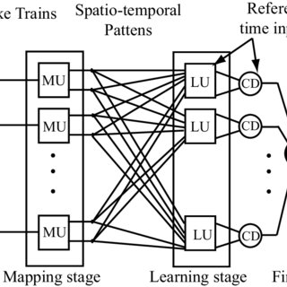 (PDF) Spiking Neural Networks Learning, Applications, and