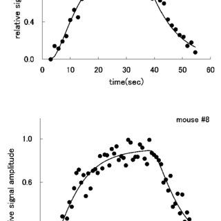 (PDF) Improvement of T1 Determination of Hyperpolarized