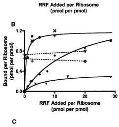ribosome bound ef g affects the binding of rrf to 70 s ribosomes a download scientific diagram [ 850 x 2004 Pixel ]