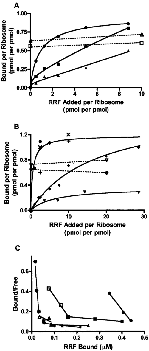 small resolution of ribosome bound ef g affects the binding of rrf to 70 s ribosomes a download scientific diagram