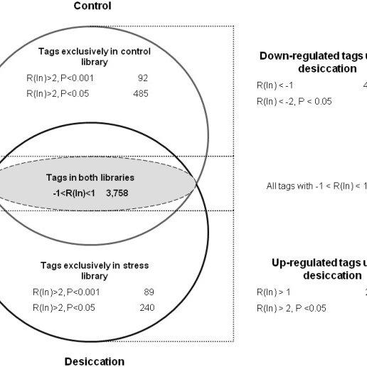 Venn Diagram Photosynthesis And Cellular Respiration