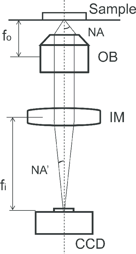 A diagram of an inverted microscope with an infinity