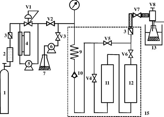Schematic diagram of experimental apparatus: (1) gas
