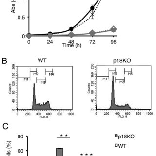 (PDF) The mTOR Pathway Controls Cell Proliferation by