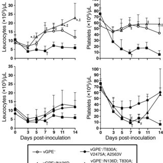 IFN-α mRNA expression in local immune tissues infected