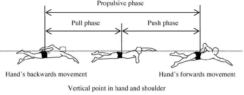 Definition of the two phases of underwater stroke motion
