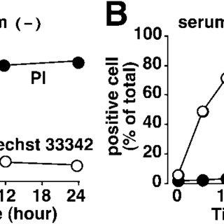 TEM analyses of nefiracetam-induced inhibition of necrosis