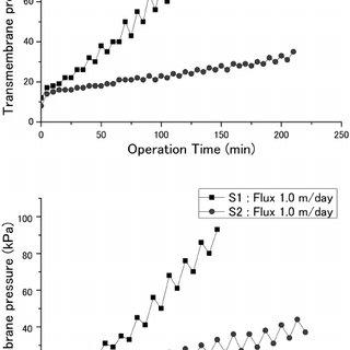 (PDF) Influence of extracellular polysaccharides (EPS