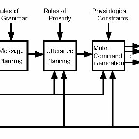 Processes by which various types of information are