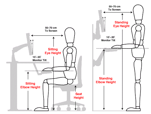 Sitting and Standing Eye-Height adjustments to avoid