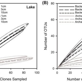 Results for two environments are shown: (A) lake; (B