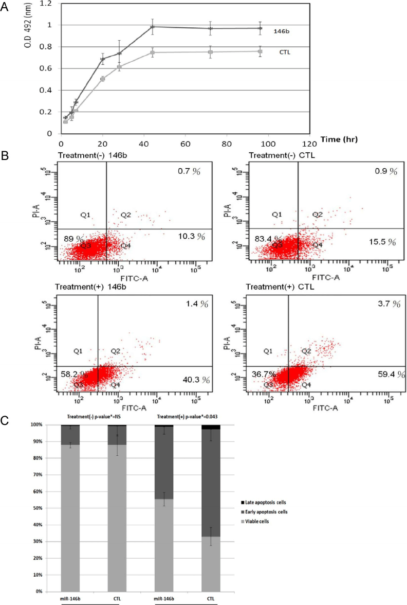 High expression of miR-146b in BCPAP cells resulted in a