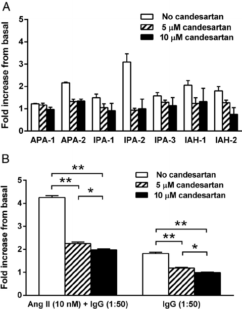 A, The effect of low dosages of Ang II (1 and 10 nM) on