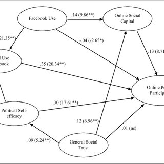 (PDF) Social Media Use and Online Political Participation
