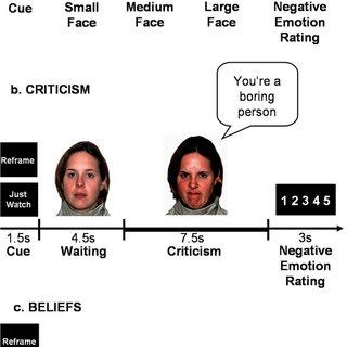 (PDF) Emotion regulation in social anxiety disorder