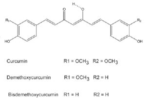 The chemical structures of curcumin, demethoxycurcumin