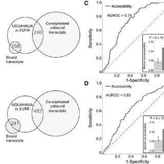 (PDF) Predicting in vivo binding sites of RNA-binding