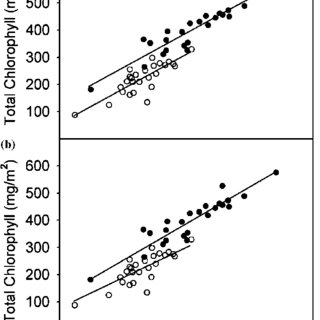 Chlorophyll a:b ratio vs SPAD meter reading with separate