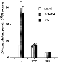 pertussis toxin and pp1 block the agonist stimulated activity of shp 2 mdck tag3 cells were pretreated with 625 ng ml pertussis toxin ptx overnight or  [ 850 x 933 Pixel ]
