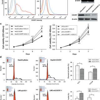 CXCR7 promotes in vivo tumor metastasis. (a) Macroscopic