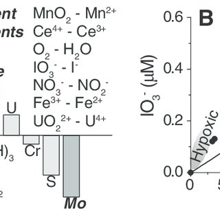 (PDF) Iodine to calcium ratios in marine carbonate as a