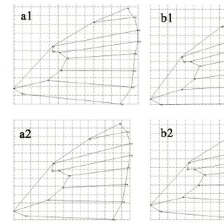 (PDF) Latitudinal gradient effect on the wing geometry in