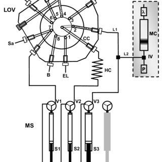 (PDF) Multisyringe Flow Injection Analysis for