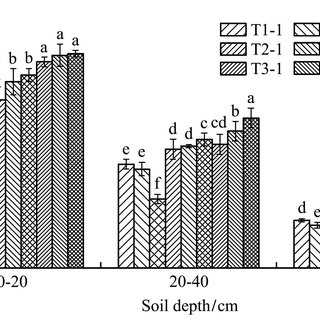 Effect of irrigation water quality and quantity on soil