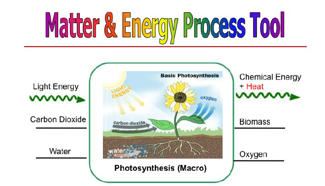 diagram with inputs and outputs of photosynthesis process whirlpool gold dryer wiring identifying matter energy at the macro