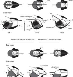 i4 engine diagram [ 850 x 1152 Pixel ]
