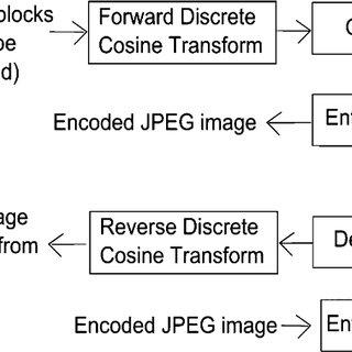 (a) The original input image; (b) the JPEG decompressed