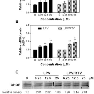 3T3-L1 cells stably expressing GFP-tagged LC3 were treated