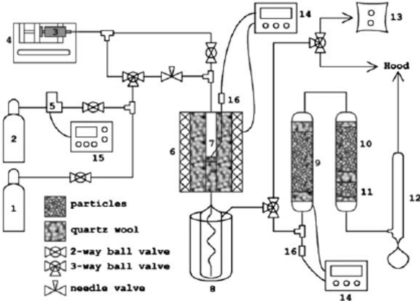 Schematic diagram of catalytic conversion of biomass