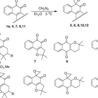 (PDF) Oxyrane derivative of ??-lapachone is potent growth