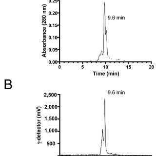 Quantitation of Functional CXCR4 Expression in Myocardial