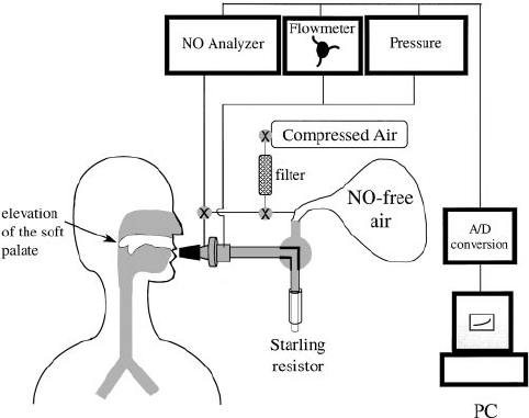 Schematic of the experimental setup used to collect the