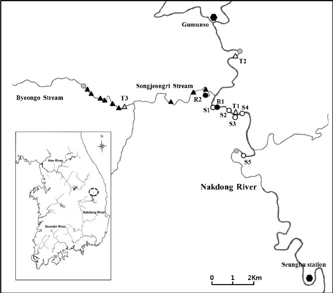 Map of the study area ( R : fish collection and release